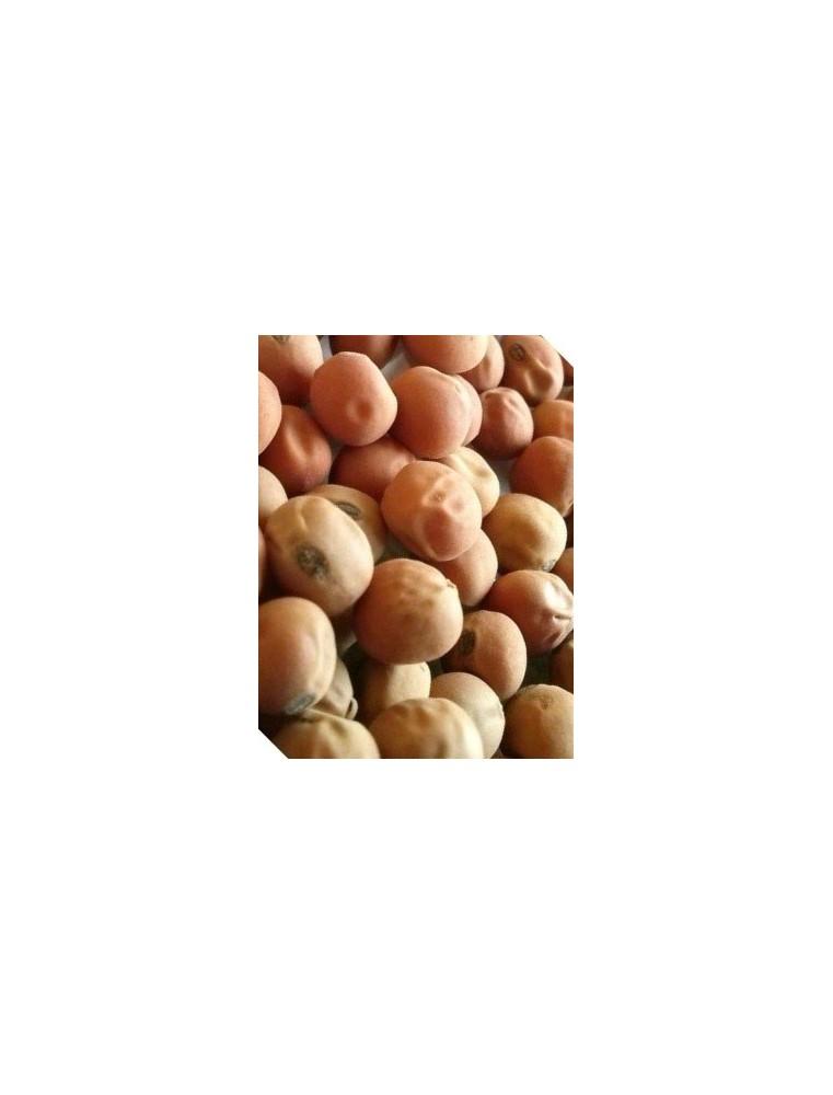 Groch siewny pastewny Milwa C1 (2 kg)
