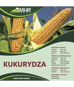 kukurydza Rataj FAO 220-230