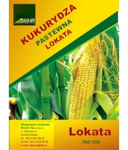 Nasiona kukurydzy- lokata