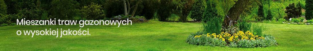 Mieszanki traw gazonowych | Małopolska Hodowla Roślin
