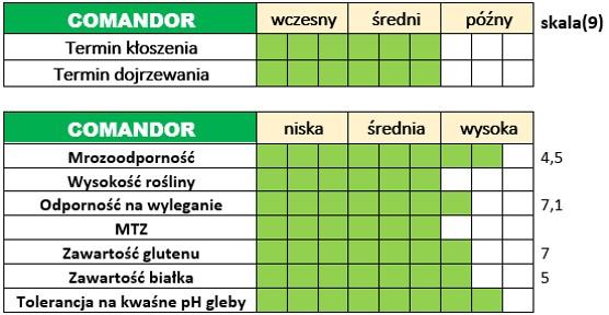 Ważniejsze cechy użytkowo-rolnicze pszenicy ozimej – COMANDOR