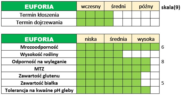 Ważniejsze cechy użytkowo-rolnicze pszenicy ozimej – EUFORIA.