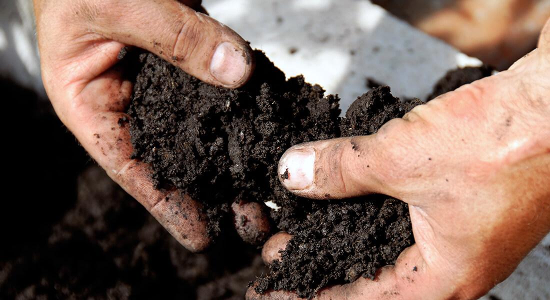 nawozenie azotem ziemia