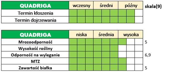 Ważniejsze cechy użytkowo-rolnicze jęczmienia ozimego – QUADRIGA